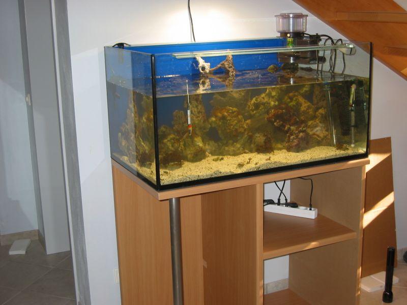 Hemnes Ikea Vitrinenschrank ~ Korallenriff und Süsswasseraquarium das schönste Hobby der Welt